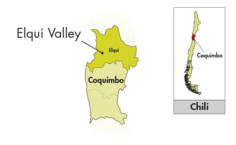 Viña Falernia Elqui Valley Carmenère Gran Reserva