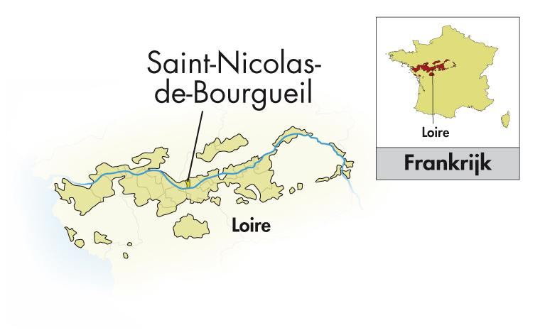 Frédéric Mabileau St. Nicolas de Bourgueil Les Rouillères