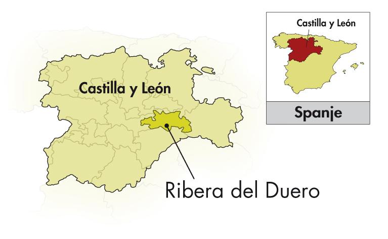 Platea Ribera del Duero roble